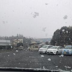 爪楊枝入れ/雪景色/フォロー大歓迎 おはようございます😊  今朝起きてから雨…