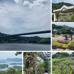 因島の風景/おやつ/チューブ絞り/ティッシュカバー/ジャム/ホウキ/... 梅雨も明けて暑くなりましたね☀️  昨日…(3枚目)
