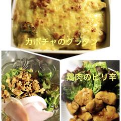 サラダ/鶏肉のピリ辛/カボチャのグラタン/おうちごはん 今夜はカボチャのグラタン😊🎶 茶小さん、…