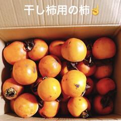 干し柿用の柿 夕方にも📦が来た😊 開けてみると柿❗️ …