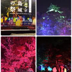リミアおでかけ部/おでかけワンショット/築城400年記念/チームラボ広島城光の祭/広島城 広島城に行って来ました🏯  明日までチー…