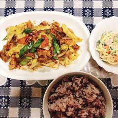 紫黒米ご飯🍚/スパゲッティサラダ/回鍋肉/LIMIAごはんクラブ/わたしのごはん/おうちごはんクラブ 今夜は回鍋肉🥩スパゲッティサラダと紫黒米…