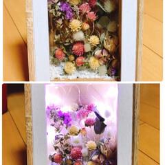 リミ友ちゃんからのプレゼント/あったかマット/ダウンベスト/空🐶/クリスマスプレゼント🎁/クリスマス2019 クリスマスプレゼント🎁届いた〜❣️  め…