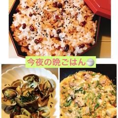 ゴーヤチャンプルー/アサリのバター焼き/お赤飯/おうちごはん 茶小さんのお赤飯見て食べたくなったのでお…(1枚目)