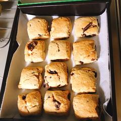 森永 ホットケーキミックス 150g*4袋入 ×12個セット(お菓子、ホットケーキミックス)を使ったクチコミ「久々のスコーン(^。^)  息子が帰って…」