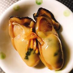 牡蠣の佃煮/牡蠣/冬/おうちごはんクラブ/おうちごはん/フード/... 牡蠣の美味しい季節になりました❣️  牡…
