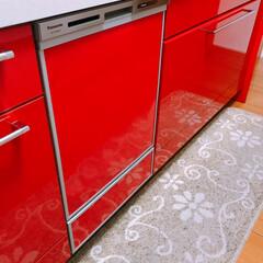 リメイク/パナソニック/食洗機 新しい食洗機👌   シルバーから赤に😉 …