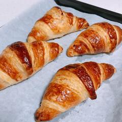 冷凍生地/クロワッサン/冷凍パン/トミーズ/富澤商店 起きたらいい匂い😍❣️    トミーズの…