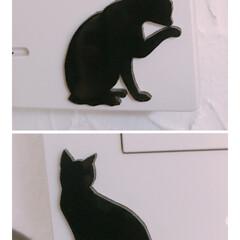 猫シルエット/黒猫/暮らし 犬用のゲートで壁紙がめくれてしまった所を…