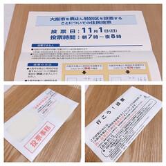 選挙/大阪都構想 お買い物行って選挙へ🗳   今日は豚しゃ…