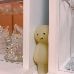 窓枠収納/スミスキー たまには掃除を🖐  お気に入りの子達🤗 (5枚目)