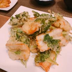 焼き茄子/グリル焼き/三つ葉消費/天ぷら 冷蔵庫整理日😆   ※ちくわと三つ葉の天…(3枚目)