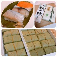名物/奈良/柿の葉寿司/暮らし 今日は用事で奈良へ⛰ 帰りに柿の葉寿司を…