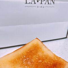 食パン 今日は朝から食パン買いに🚗💨💨  LA🐰…