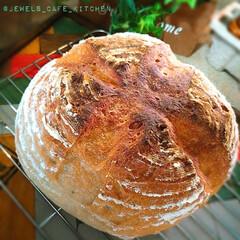 おうちパン/ホームメイド/発酵かご/全粒粉入りカンパーニュ/カンパーニュ/パン活/... 発酵かごを買ったので 全粒粉入りカンパー…