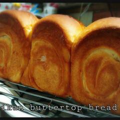 ホームメイド/みかんパン/朝ごパン/山型パン/キッチン/フード/... 久しぶりに山型焼いてみました☺︎❤たくさ…