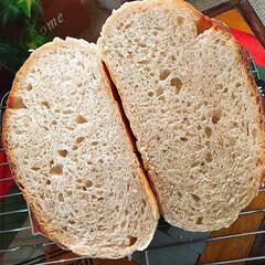 おうちパン/ホームメイド/発酵かご/全粒粉入りカンパーニュ/カンパーニュ/パン活/... 発酵かごを買ったので 全粒粉入りカンパー…(2枚目)