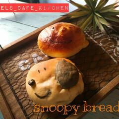 お惣菜パン/手作り/ツナマヨパン/いつも有難うございます/ホームメイド/スヌーピーパン/... スヌーピー好きはいよいよパンにまで🤣