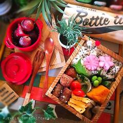和食弁当/ᴊᴋ弁当/女子弁/もくもくハウス/お弁当/春のフォト投稿キャンペーン/... 久々のおべんと投稿🙈