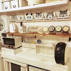 絵皿/フェリシモ/キッチン お気に入りのフェリシモの動物柄のお皿を …