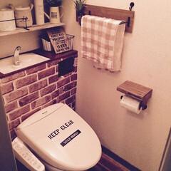 タンクレス風トイレ/DIY 1.改善したかった点 ■古い狭い賃貸で収…