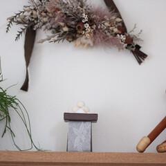 グリーンのある暮らし/カイボイスン/壁に付けられる家具/リビング/お月見/インテリア/... 今年のお月見は和三盆でできたお菓子を飾り…