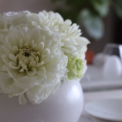 お花のある生活/お花のある暮らし/花のある生活/花のある暮らし/テーブルフラワー/パン教室/... お気に入りのパン教室での一コマ (掲載許…