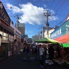 函館朝市/旅行/LIMIAおでかけ部/おでかけワンショット 函館の朝市も楽しみました。 こういうとこ…