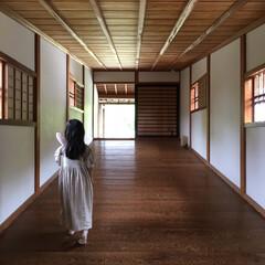 御橋廊下/和歌山城/フォロー大歓迎/LIMIAおでかけ部/おでかけワンショット 伝わりますか? これ、川にかかった「御橋…
