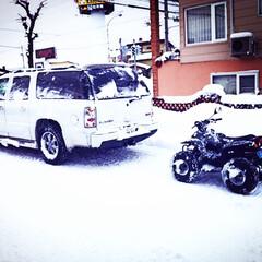 ATV50 ATV50です! 主に雪道専門で遊んでま…