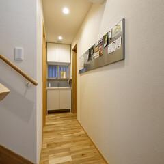 廊下/住宅/新築/新築住宅/注文住宅/住まい/... IKEAのマグネットパネルを設けた廊下 …