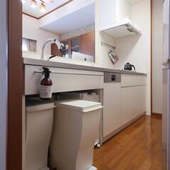 キッチン/キッチン収納/ゴミ箱/ステンレスキッチン/オーダーメイドキッチン/リノベーション/... シンクの下部にゴミ箱を並べて置けるキッチ…