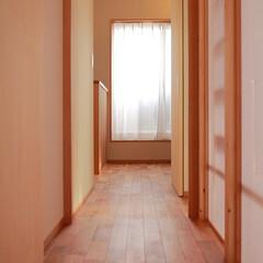 廊下/フリースペース/室内干し/部屋干し/バルコニー/洗濯/... 明るい廊下。廊下の先には室内干しができる…(1枚目)