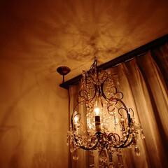 照明/玄関/シャンデリア/カーテン/ミラーレースカーテン/トーヨーキッチン/... 玄関のシャンデリア 「スタイリッシュキッ…