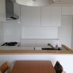 キッチン/キッチン収納/女性建築士/インテリア/造作家具/家具/... 見た目以上に収納力のある収納 「シンプル…(1枚目)