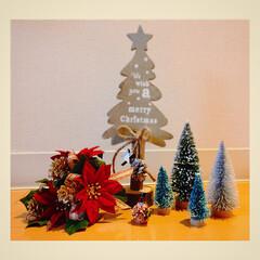 小さな世界/Xmasアイテム/ABCクラフト/クリスマス2019/リミアの冬暮らし/住まい/... 小さな可愛い世界♡ 見てるだけでなんだか…