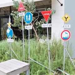 お出かけ/標識/アート/ハンバーガー/夏の思い出/横浜/... 横浜のマリン&ウォークへ行きました。 ア…(5枚目)