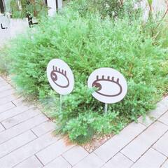 お出かけ/標識/アート/ハンバーガー/夏の思い出/横浜/... 横浜のマリン&ウォークへ行きました。 ア…(6枚目)