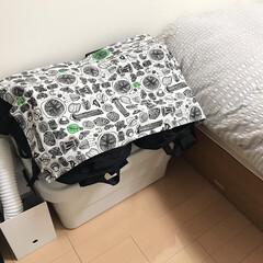 収納/ファイルボックス収納/無印ファイルボックス/無印/アイリスオーヤマ/布団乾燥機/... 布団乾燥機はすぐに使えるように 無印のフ…