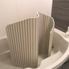 すっきり暮らす/シンプルな暮らし/風呂フタ/風呂蓋/風呂/ファイルボックス収納/... 暑くなり、湯ぶねにつからずシャワーのみに…(2枚目)