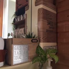 木の家/木/DIY/洗面所/収納ボックスDIY/セリアDIY/... おはようございます!歯ブラシ収納ボックス…