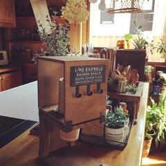 小物/紙コップホルダー/紙コップ/コーヒースタンド/リメイク/セリアリメイク/... コーヒースタンドで紙コップホルダー