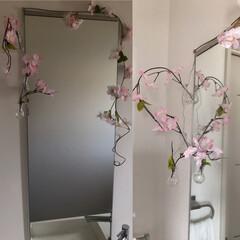 季節の飾り/季節の花/洗面/トイレ/ダイソー/セリア/... お手洗いの洗面の場所に 季節の飾りをしま…