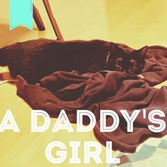 クロネコ/黒猫/猫/ねこ/懐かない/臆病者/... お父さん子。 脱いだスエットを独占。