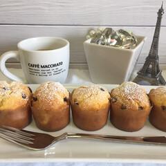 マフィン/手作りマフィン/お家カフェ チョコチップマフィン♪  ホットケーキミ…