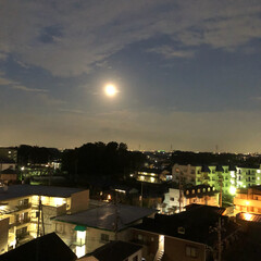 満月🌕 今日は 満月🌕 ですね! 夜空に燦然と輝…