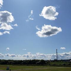 仕事中/おでかけ/秋/天気/気候/道東/... ここ数日、この時期本来の気候に戻って過ご…
