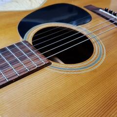 アコギ/アコースティックギター/ギター/楽器/趣味/ひらた店長/... 店長(弟)の趣味はエレキベースを弾くこと…
