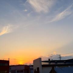 夕焼け/夏/空/夕陽/夕日/しべちゃ/... 暑い日が続いてますが…こういう夕日を見る…