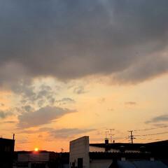 夕陽/夕日/標茶/道東/北海道/夏/... 本日の夕日。ひらた家具店の2階の窓から。…